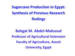 Sugarcane Production in Egypt: Synthesis of Previous Research