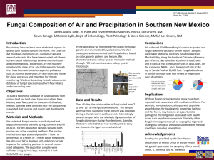 Fungal Composition of Air and Precipitation in Southern New Mexico