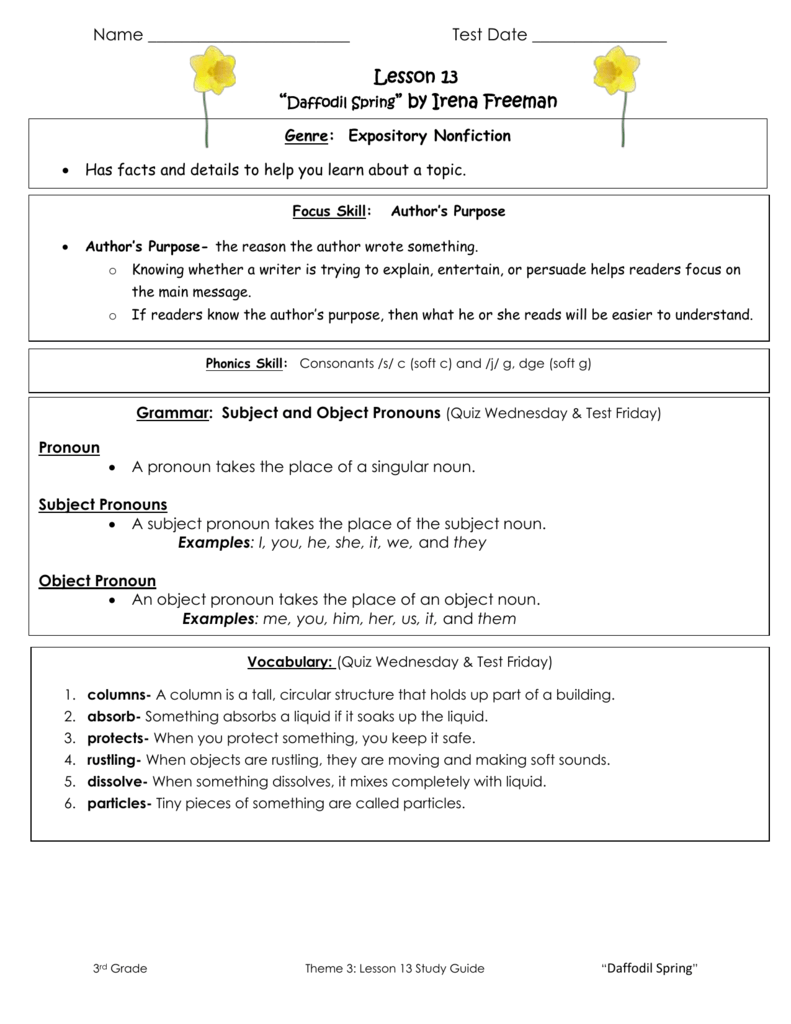 Workbooks pronoun worksheets for 3rd grade : Lesson 13 Study Guide