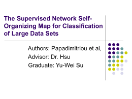 The Supervised Network Self-Organizing Map for Classification of