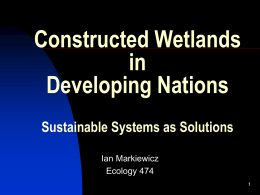 Constructed Wetlands in Developing Nations Sustainable System