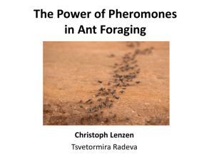 The Power of Pheromones in Ant Foraging