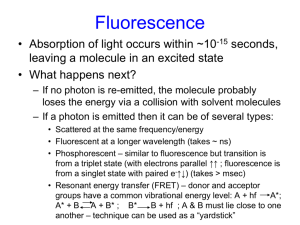 Light Scattering & Fluorescence