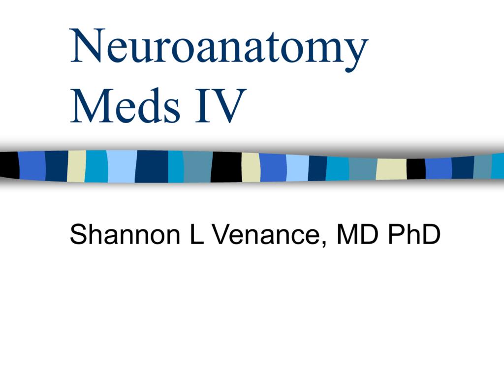 Neuroanatomy Meds IV