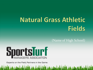 Natural Grass Athletic Fields