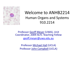ANHB2214 Introduction 2009