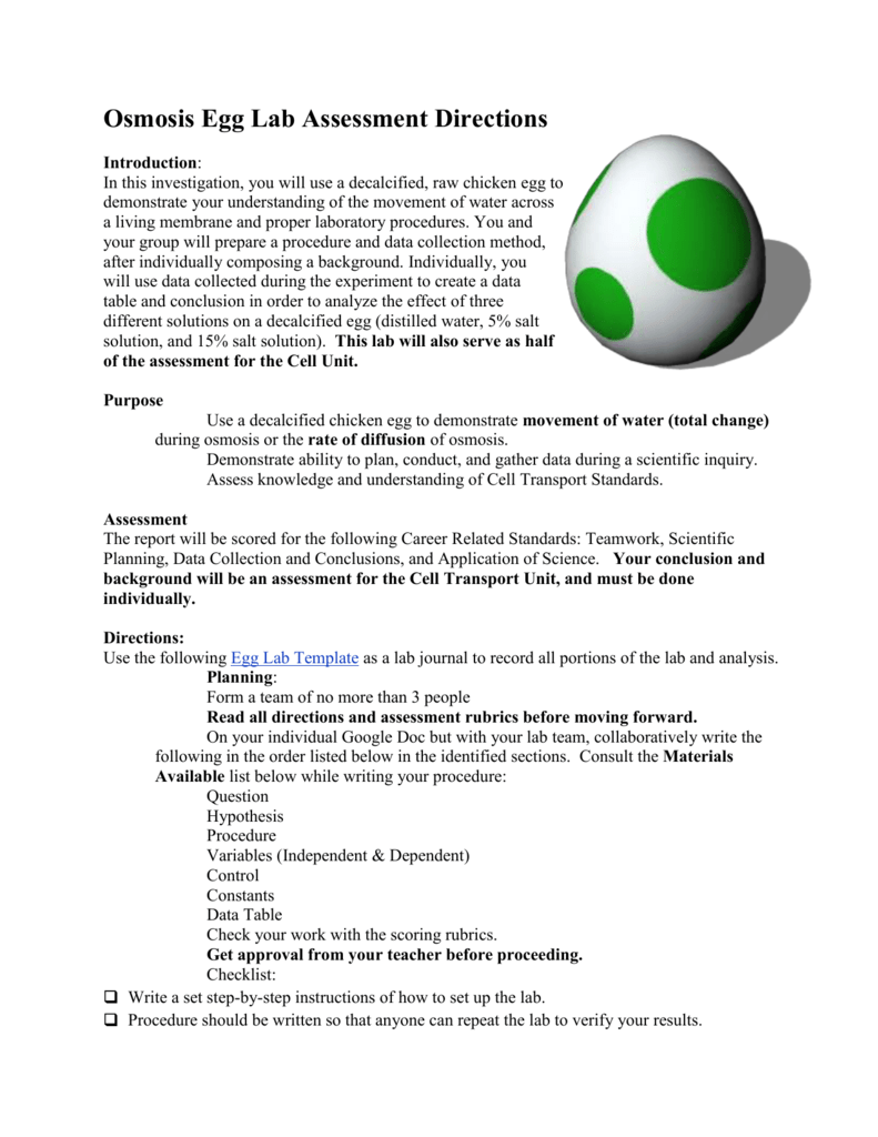 Lab report on osmosis of an egg. Osmosis Egg Lab by ...