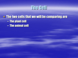 The Cell - Harris7Science