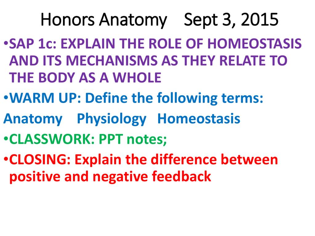 Intro To Anatomy Ppt