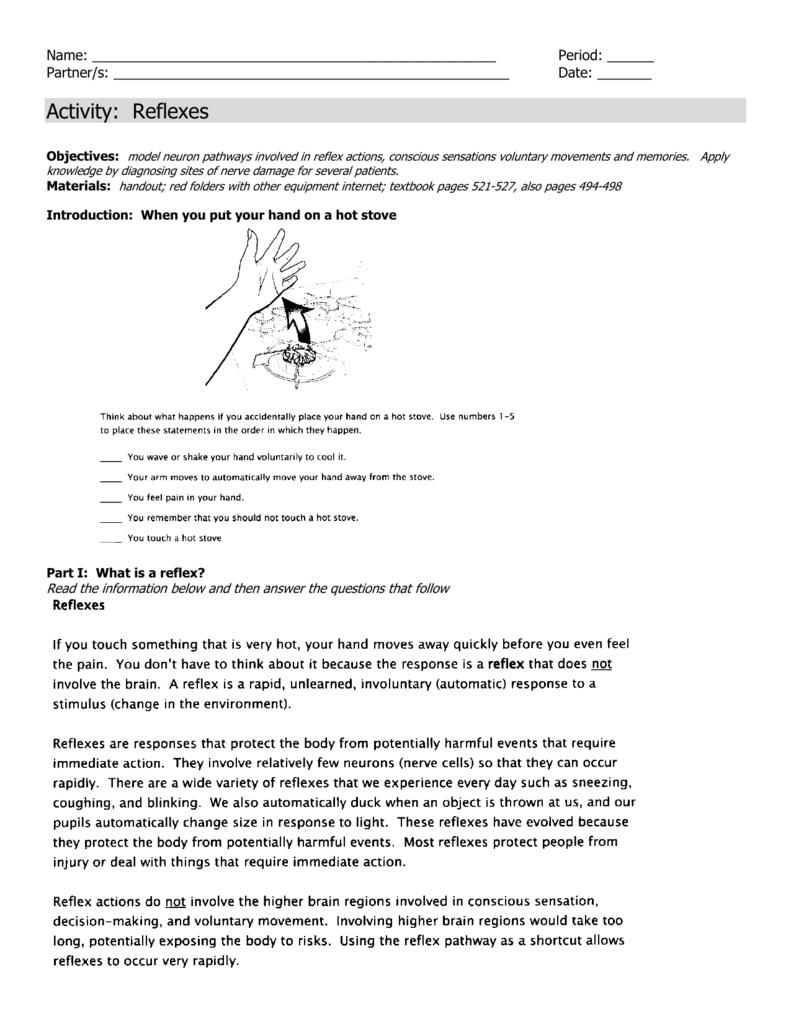 LAB: Reflex Arc Activity