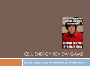 Cell Energy Review Game