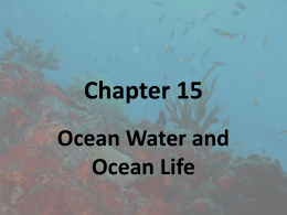 Chapter 15 Ocean Water and Ocean Life