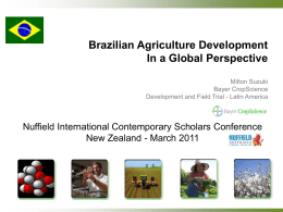 Brazilian Agriculture Development