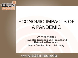 ECONOMIC IMPACTS OF A PANDEMIC