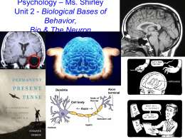 Psychology * Ms. Shirley Unit 2 - Biological Bases of Behavior, Bio