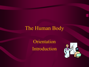Introduction to Anatomy & Physiology