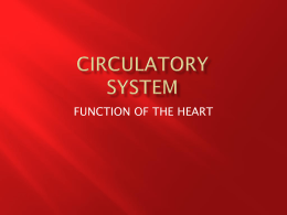 circulatory system - Havelock High School Health Occupations