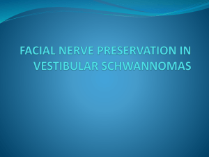 facial nerve preservation in vestibular schwannomas