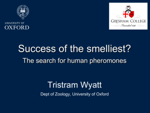 Success of the Smelliest: The Search for Human Pheromones