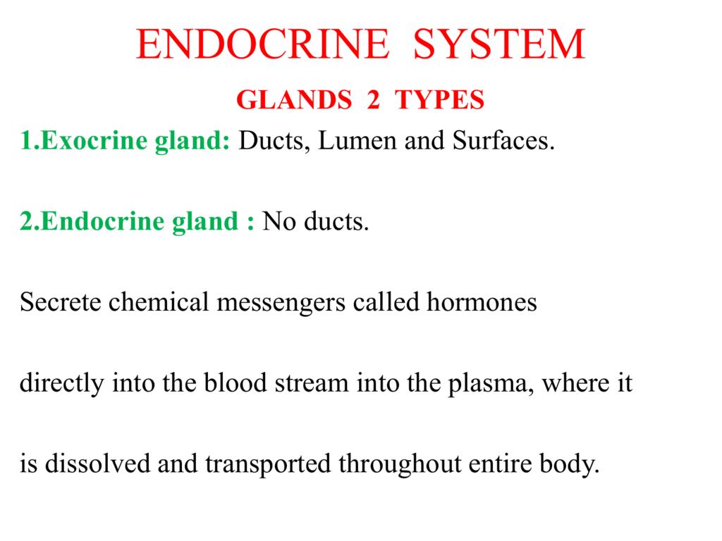 Thyroid Stimulating Hormone Releasing Hormone Tsh Rh