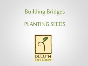 Building Bridges, Planting Seeds