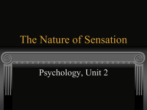 The Nature of Sensation