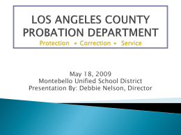 LOS ANGELES COUNTY PROBATION DEPARTMENT Protection