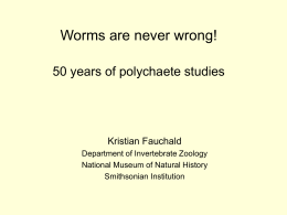 50 years of worms