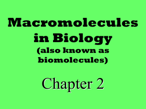 Macromolecules Notes - Liberty Union High School District