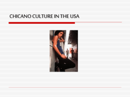 The Chicano Culture in the USA