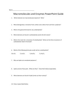 Macromolecule and Enzyme Review Worksheet