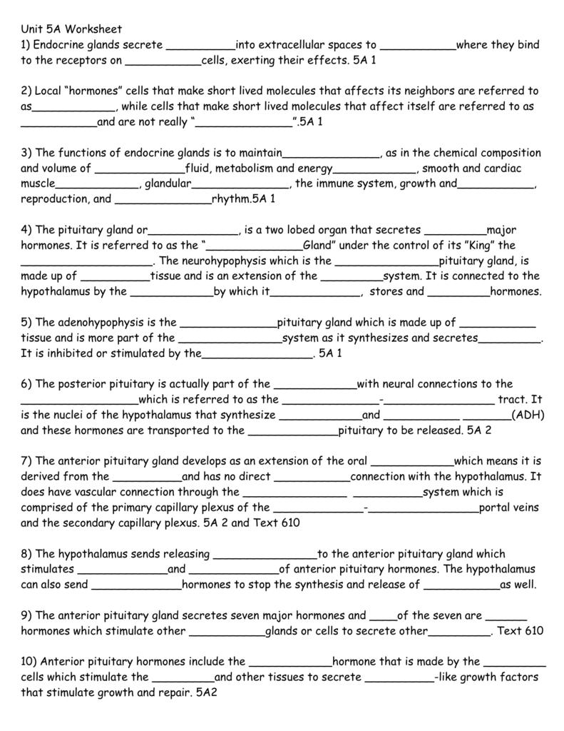 Unit 5a Worksheet 1 Endocrine Glands Secrete Into