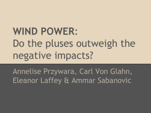 WIND POWER: Do the pluses outweigh the negative impacts?