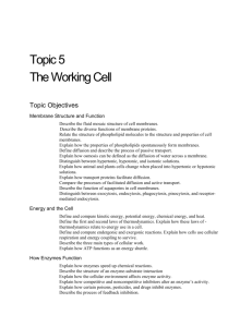 5 Topic 5 The Working Cell Topic Objectives Membrane Structure
