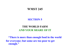 THE WORLD FARM