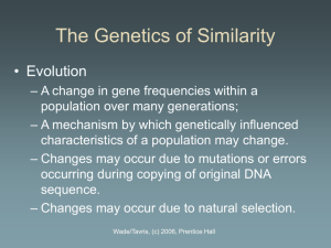 Chapter 3: The Genetics of Similarity (Professor Powerpoint)
