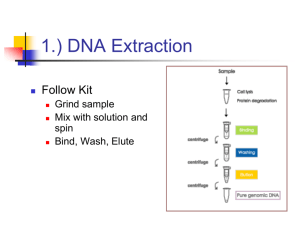 Chapter 3 pt4: Recombinant DNA Technology