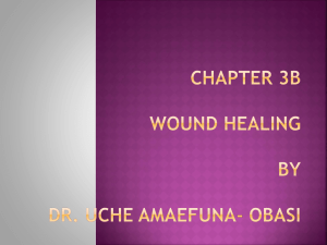 Chapter 3b WOUND HEALING By Dr. Uche Amaefuna