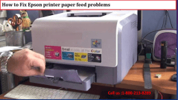 1-800-213-8289 Fix Epson printer paper feed problems