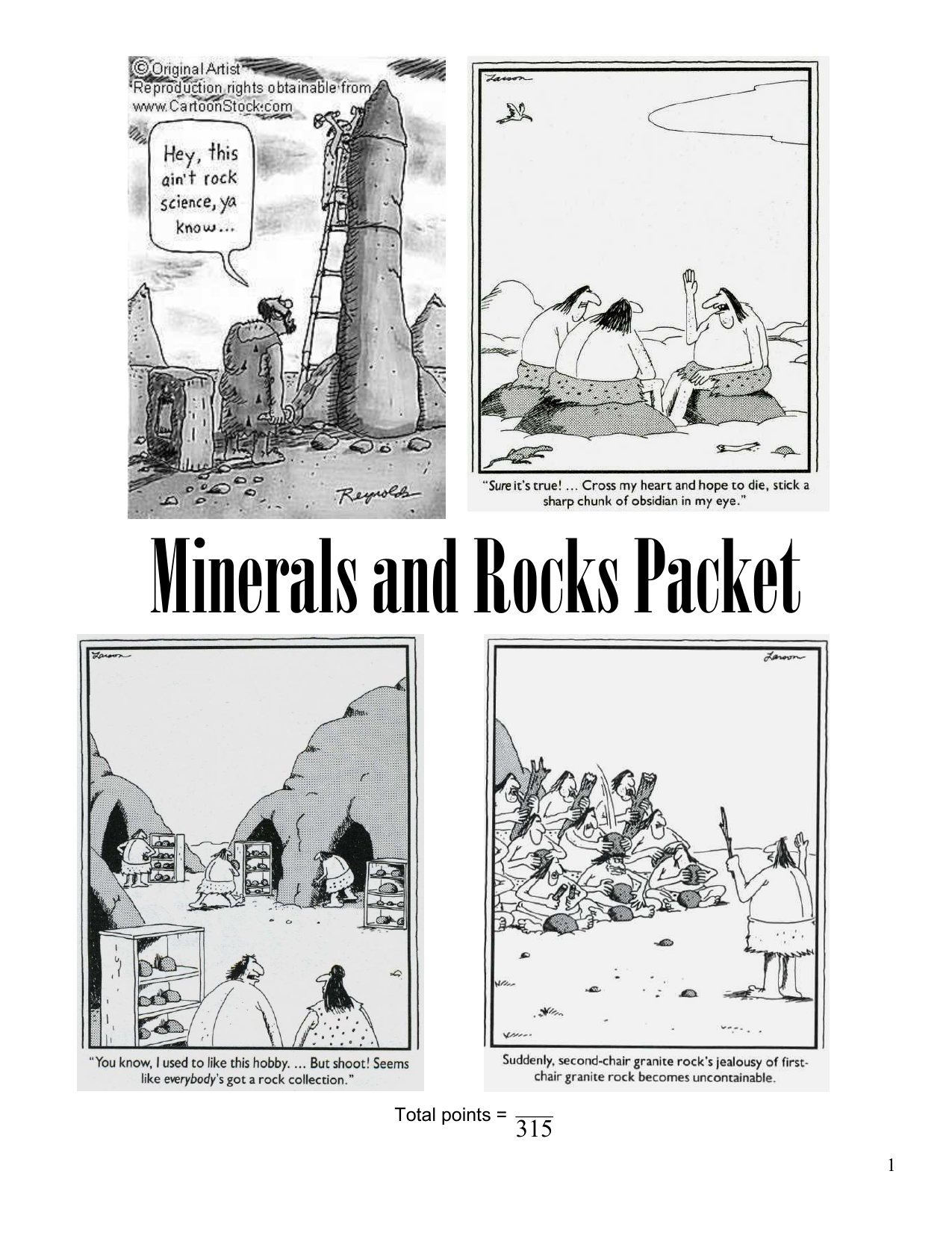 Minerals And Rocks Packet