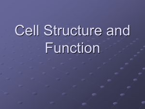 Cell Structure and Function (2)