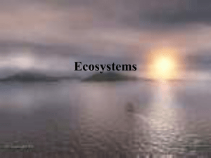 Ecosystems and cycles Powerpoint
