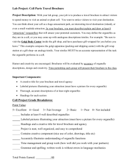 H.S. BIOLOGY Cell Organelle Travel Brochure project w/rubric