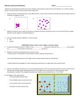 35 Diffusion And Osmosis Worksheet Key - Worksheet Project ...
