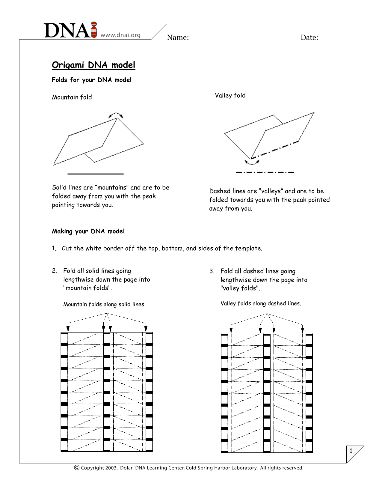 Origami Orchid Flower Folding Instructions | Origami Instruction ... | 1651x1275