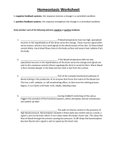 homeostasis-worksheet