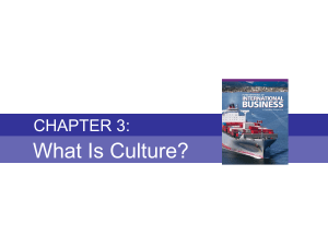 Chapter 3 - What is Culture