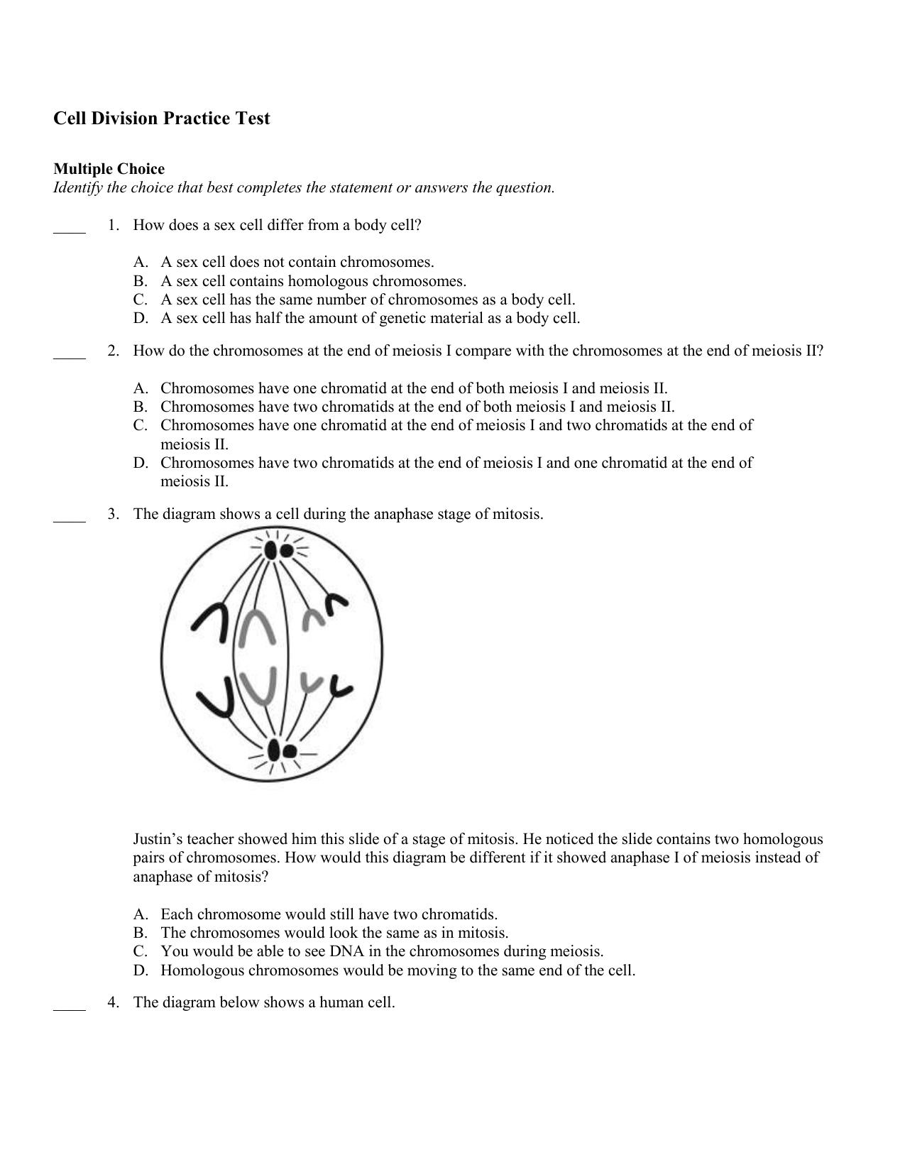 Unicellular Organisms Undergo Mitotic Division To