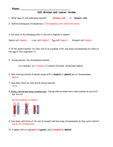 cell division and cancer review sheet Answers (1)