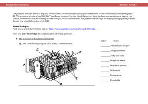 Biological Membranes Worksheet